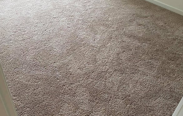 End Of Lease Carpet Cleaning Preston